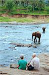 Tourists watching Asian elephants bathe in the river, Pinnawela, Sri Lanka, Indian Ocean, Asia