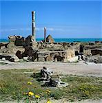 Les ruines des Thermes Romains antiques, les thermes d'Antonin, Carthage, patrimoine mondial de l'UNESCO, Tunis, Tunisie, Afrique du Nord, Afrique