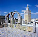 Vue sur la ville et de la grande mosquée de toit en tuiles, Tunis, Tunisie, l'Afrique du Nord, Afrique
