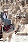 Man Riding Camel, Cairo, Egypt