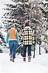 Junges Paar Hand in Hand, Wandern im Schnee, Rückansicht