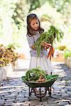 Cute girl putting carrots in a wheelbarrow