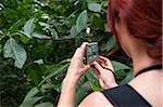 Frau Taking Picture of Flower in Wald, Rio De Janeiro, Brasilien