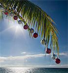 Palm quitter avec des ornements de Noël.