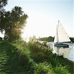 Sailing boat on the Norfolk Broads, Norwich, Norfolk, UK
