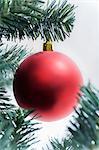 Boule de Noël rouge sur l'arbre
