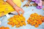 Vendeur de fleur avec les têtes de fleurs de souci utilisés par les bouddhistes comme offrandes saintes aux temples et sanctuaires, Katmandou, Népal, Asie