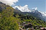 Wengen and Jungfrau, Bernese Alps, Bernese Oberland, Swiss Alps, Switzerland, Europe