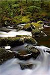 River Teign, Dartmoor National Park, Devon, England, United Kingdom, Europe