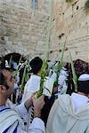 Sukkot celebrations with Lulav, Western Wall, Old City, Jerusalem, Israel, Middle East
