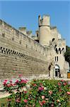 Porte de la République, muraille et remparts, Provence, Avignon, France, Europe