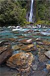 Thunder Creek Falls, Haast, West Coast, South Island, New Zealand, Pacific