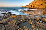 Soleil du matin brille doré sur les falaises à Seacombe sur l'île de Purbeck, Côte Jurassique, patrimoine mondial de l'UNESCO, Dorset, Angleterre, Royaume-Uni, Europe