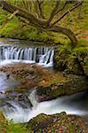 Horseshoe Falls dans le Parc National de Brecon Beacons, Powys, pays de Galles, Royaume-Uni, Europe