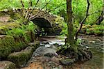 Medieval Hisley Bridge spanning the River Bovey in Hisley Wood, Dartmoor, Devon, England, United Kingdom, Europe