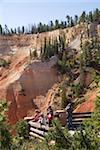Aqua-Canyon, Bryce Canyon Nationalpark, Utah, Vereinigte Staaten von Amerika, Nordamerika