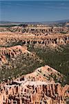 Alligator rock Formation in weiß, Bryce Point, Bryce Canyon Nationalpark, Utah, Vereinigte Staaten von Amerika, Nordamerika