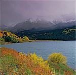 Rocky River und Herbstbäume in ländlichen Umgebung