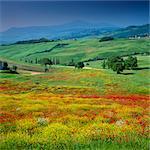 Sanfte Hügel in ländlichen Umgebung