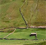 Vue aérienne des pâturages clôturés dans le paysage rural