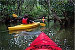 Kayaking at Kuroshio No Mori, Mangrove Park, Amami Oshima, Amami Islands, Kagoshima Prefecture, Japan