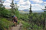Female hiker on Mt. Healy Overlook Trail in Denali National Park & Preserve, Interior Alaska, Summer