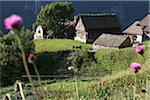 Soleil qui brille sur les maisons provinciales dans la vallée Antigorio, Italie
