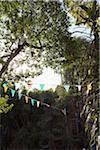 Une chaîne de multi couleur drapeaux suspendus entre les arbres dans un jardin
