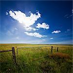 Farm gate below green mountain meadow, Barkly East Region, South Africa