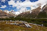 View of the Fitz Roy mountain range, Glaciers National Park, El Chalten, Patagonia, Argentina