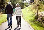 Vue arrière du couple principal actif, main dans la main en se promenant dans le parc