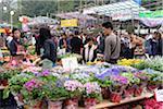 People shopping at Chinese New Year flower market, Causeway Bay, Hong Kong
