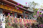 Close up of Po Lin Monastery, Lantau Island, Hong Kong