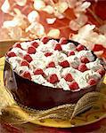 raspberry bavarian cream dessert