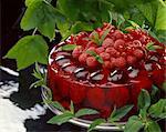 fruits en gelée d'aspic
