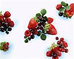 Grappes de fruits d'été