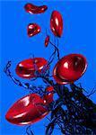 Blood clotting, conceptual computer artwork.
