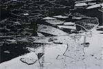 Eis bedeckt-Kanal, Lisson Wide, Maida Vale, London, UK.