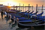 Row of Gondolas on Grand Canal at Dawn, Venice, Veneto, Italy