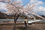 Cherry blossom at Arashiyama, Kyoto, Japan