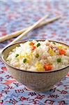 Kantonesische Reis