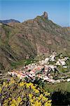 Tejeda und Roque Nublo, Gran Canaria, Kanarische Inseln, Spanien, Europa