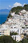 Ville de Capri sur l'île de Capri, baie de Naples, Campanie, Italie, Europe