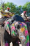 Cérémonial peint éléphant à Amber Fort près de Jaipur, Rajasthan, Inde, Asie