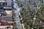 Overview of Almeda Park, Historic Center, Mexico City, Mexico, North America