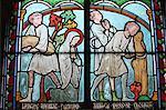 Stained glass depicting Sainte Genevieve's life, cloister of Notre-Dame de Paris cathedral, Paris, France, Europe