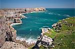Blick auf St. Govan's Head, Vereinigtes Pembrokeshire, Wales, Königreich, Europa