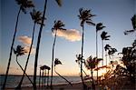 Plage de Bávaro au lever du soleil, Punta Cana, République dominicaine, Antilles, Caraïbes, Amérique centrale