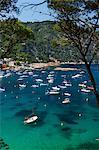 Blick über die Bucht, Aiguablava, in der Nähe von Begur, Costa Brava, Katalonien, Spanien, Mittelmeer, Europa