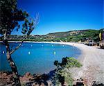 Strand von Palombaggia, in der Nähe von Porto Vecchio, Süd-Ost-Korsika, Korsika, Frankreich, Mediterranean, Europa